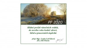 PF 2020001